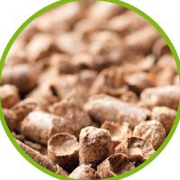 What is the pellet ?
